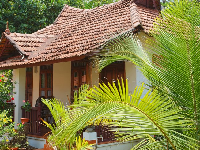 4 Days Meditation and Ayurveda Yoga Retreat India