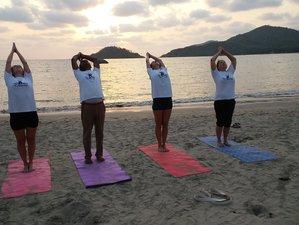 7-Daagse Meditatie & Power Yoga Retraite in Kerala, India