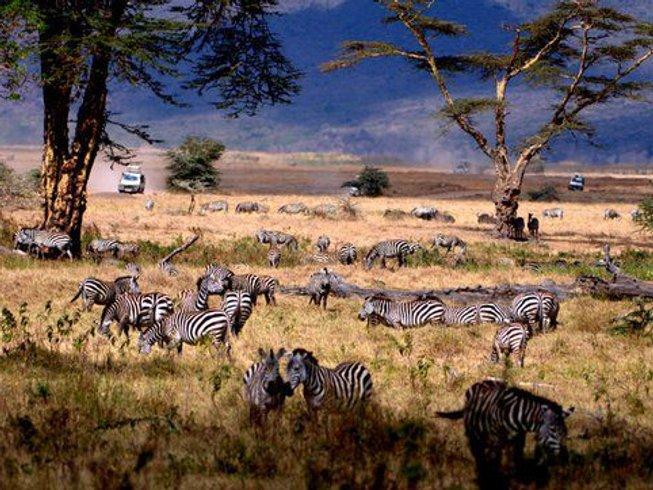 6 Days Wildlife Tanzania Safari