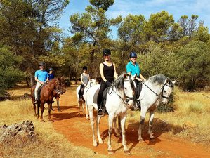 4 Day Extraordinary Horse Riding Holiday in Mollina, Malaga