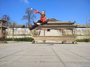 6 Months Advanced Kung Fu in China