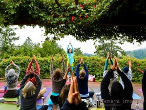 3 Days Summer Solstice Yoga Retreat in Sonoma California