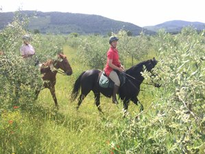 8 Day Umbrian Adventure Horse Riding Holiday in Spoleto, Province of Perugia