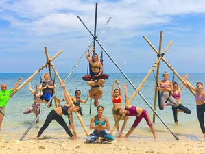 7 Days 50-hour Aerial Yoga TTC in Koh Phangan, Thailand