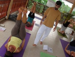 2 Week Online Yoga Philosophy and Psychology With Hatha Yoga Course - Module 2