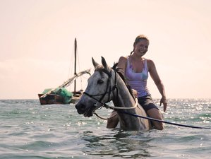 5 Days Incredible Horse Riding Safari in Vilanculos, Mozambique