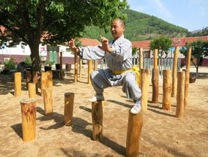 3 Years Authentic Kung Fu School at Tianmeng Mountains Academy in Linyi, Shandong