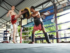 3 Month Long Holiday and Muay Thai Camp in Koh Phangan, Surat Thani