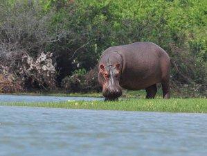 3 Days Selous Game Reserve Safari in Tanzania