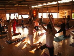 4 Days Remarkable Yoga Retreat and Surf Camp Canggu, Bali