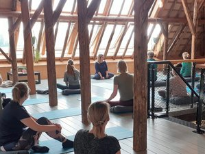 3-Daagse Recharge Yoga Retreat op een Geheim Eiland in Noord-Holland