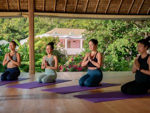 6 Day Yoga Wellness Retreat in Koh Samui, Surat Thani