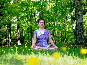 7 Days Empowering Meditation and Yoga Retreat in Rishikesh, India