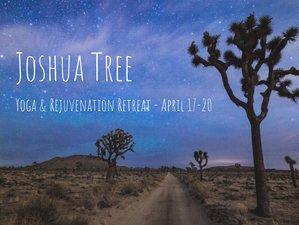 5 días de retiro de yoga para la recuperación en Joshua Tree, California