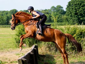 8 Days Exclusive Horse Riding Summer Camp for Teens in Tipperary, Ireland