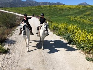 4 Day Silver Package Horse Riding Holiday and Luxury Self-Catering Stay in Rural Andalusia