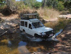 13 Days Wild Zambia Safari