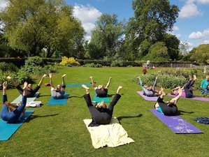 3 Day Ethical Lush New Forest House and Gardens Yoga and Meditation Retreat in Lyndhurst, England