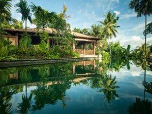 8 Days Jungle Yoga Retreat in Southern Province, Sri Lanka