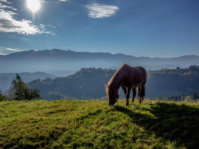 4 Days Meditation and Yoga Retreat in Romania