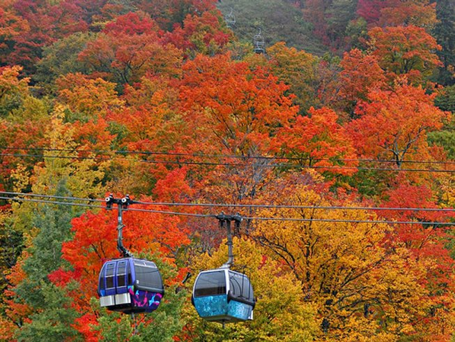 6 Days Peak Fall Foliage; Hiking, Hot Pilates, Wellness, and  Yoga Retreat in USA