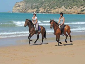 8 Days Superb Horse Riding Holiday Andalucia, Spain