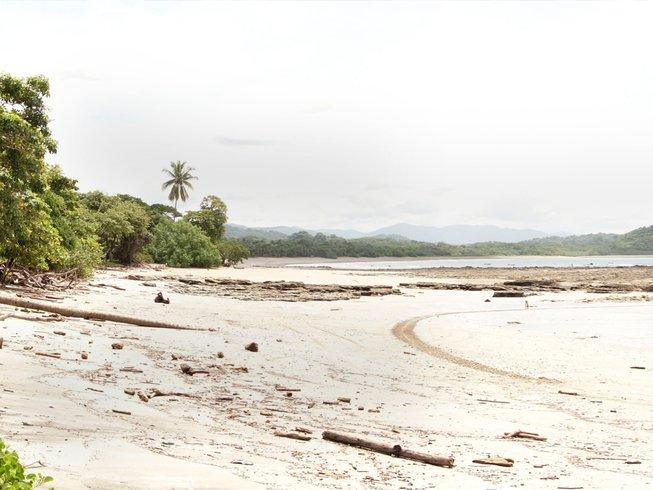 8 jours en stage de yoga et méditation pour vivre le rêve d'une vie à Nosara, Costa Rica