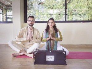 28 Day 200-Hour Online Yoga Teacher Training Program with Yogic Food Classes