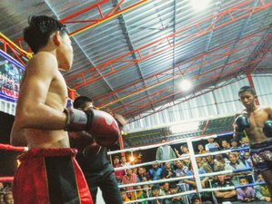 14 Day Train Muay Thai, Take the Boxing Fight, and Recharge Your Energy in Wichian Buri, Phetchabun