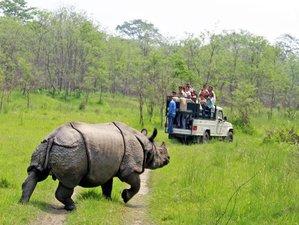 11 Days Everest View Trek with Chitwan National Park Wildlife Safari in Nepal