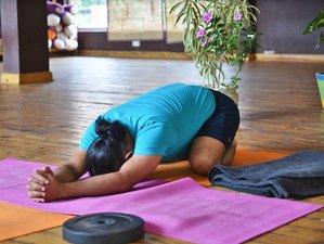 Self-Paced Online 200-Hour Online Yoga Teacher Training Hatha and Ashtanga Yoga