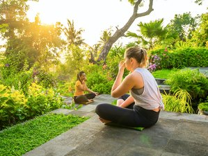4 Days Diving, Meditation, and Yoga Holiday in Bali, Indonesia