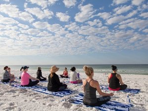 13 Days 200 Hrs Yoga Teacher Training Age 50+ Tampa, Florida USA