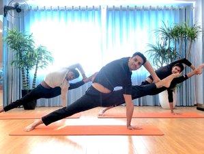 80 Day 30-Hour Advanced Flexibility Online Yoga Teacher Training