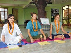 7 Days Basic Yoga Course in Rishikesh, India