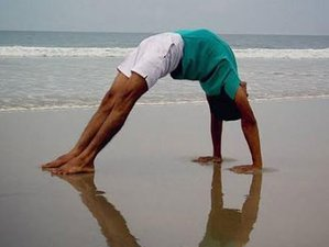 10-Daagse Yoga Retraite in India