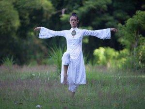 21 Day 5 Element and 8 Trigram Module C Level 1-3 Medical Qigong Teacher Training in Uluwatu, Bali