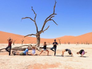 10 Day Namibia Highlights and Yoga Safari Adventure