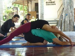 8 Days Dynamic Hatha Yoga Retreat in Bali
