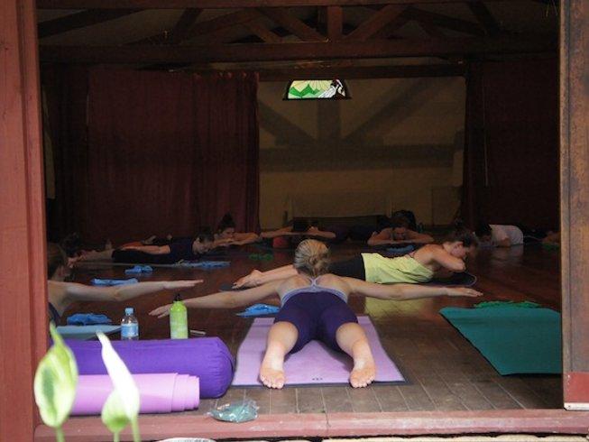 7 Days Studio Hopping Tour and Yoga Retreat in New York