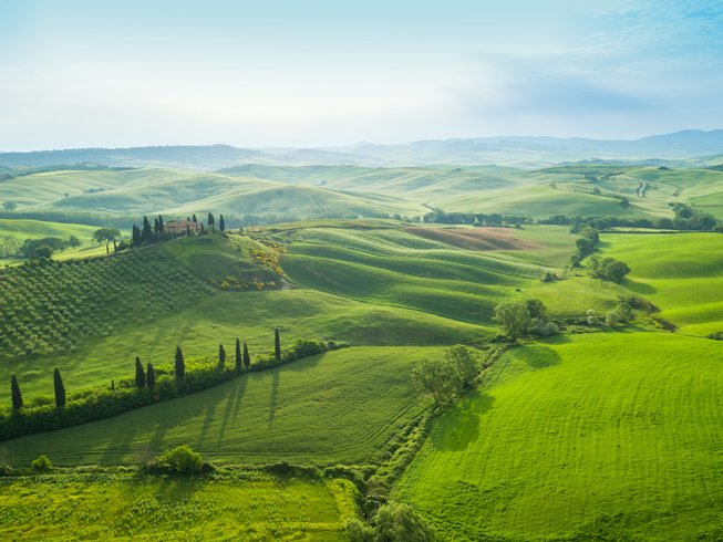 7 Days Wine and Cooking Holidays in Tuscany, Italy
