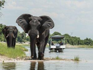 8 Day Muchenje Yoga Retreat and Safari in Western Chobe National Park