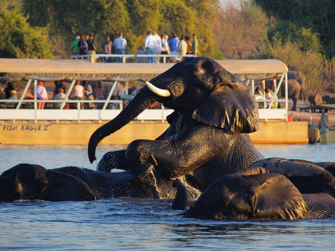14 Days Budget Safari in Botswana, Namibia, and Zimbabwe