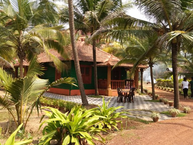 14 Days Ayurveda, Meditation and Yoga Retreat Kannur, India