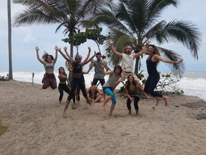 31 Day 300 Hour Advanced Yoga Teacher Training Course in Palomino