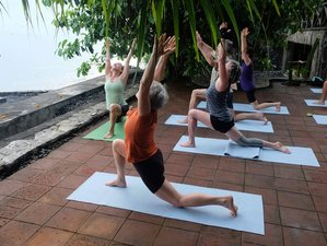 6 Day Luxury Inner Growth Meditation and Yoga Retreat in Buleleng, Bali