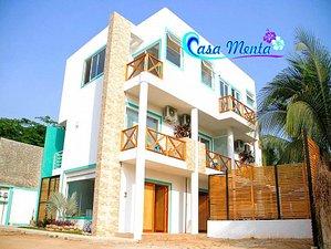 Casa Menta - Surffreundlicher Ort am Berühmten Surfstrand in Zicatela, Mexiko