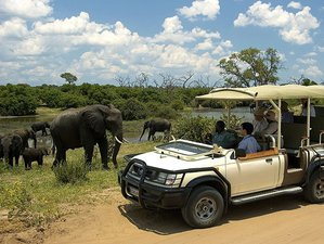 3 Days Victoria Falls Safari in Zimbabwe