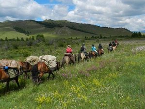 8 Day Central Mongolian Magic Tour and Horse Riding Holiday in Orkhon Valley, Mongolia