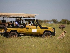 5 Days Best of Samburu, Ol Pejeta, and Aberdare  Safari in Kenya